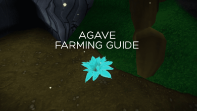 Photo of Comprehensive Agave Farming Guide