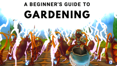 Photo of A Beginner's Guide to Gardening