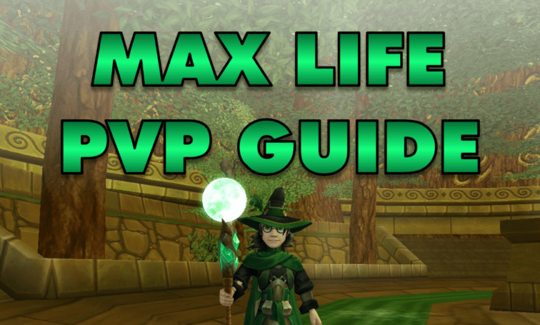 Photo of Max Life PVP Guide (Level 140)